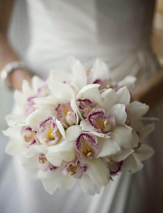 fiori autunnali orchidea e1593593961797 - 15 fiori autunnali ideali per il tuo matrimonio